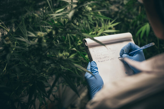 ANAB to AccreditPurity-IQ Cannabis Authenticity and Purity CertificationProgram